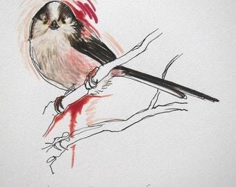 Long-tailed tit original drawing