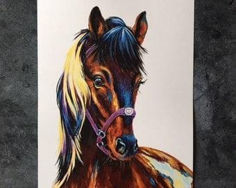 Nutmeg the Horse Art Print 11x14