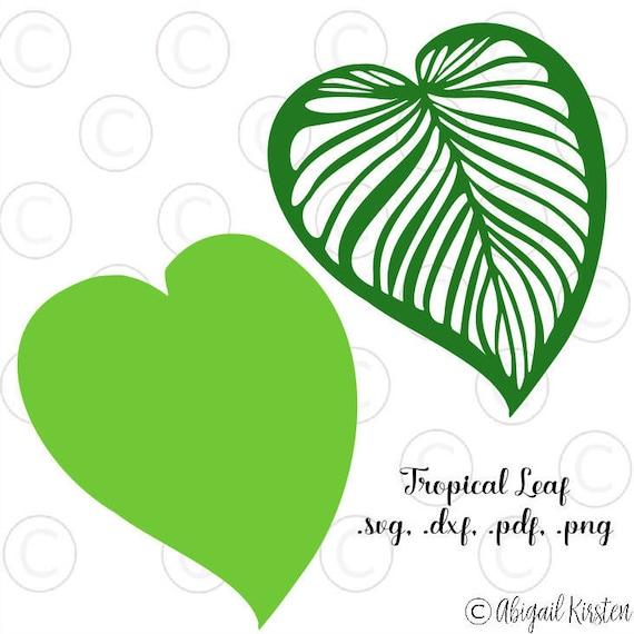 Large Tropical Palm Leaf Svg Cut Files Leafy Cut Files