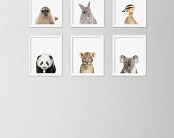 Animal Wall Art nursery animal art | etsy