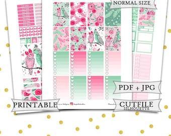Happy Planner Stickers/Printable Happy Planner Stickers/Valentines Stickers/Love Birds Planner Sticker/February Monthly Planner Stickers