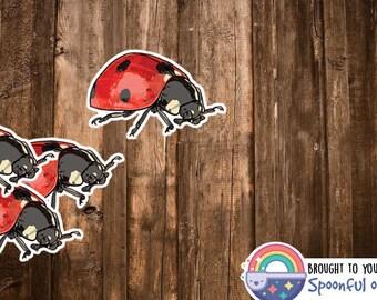 Lady Bug Sticker - Ladybug Decorations/Art Decor - Bugs, Beetle, Entomology, Biology Stickers - Ladybug Birthday Party - Ladybug Gifts