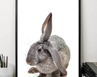 Rabbit bunny print cute animals print wall art decor nursery print digital download poster 5 x7 8x10 12x16 black white minimalist art poster