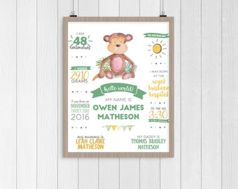 Little Monkey Birth Poster