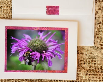 Bee Balm note card
