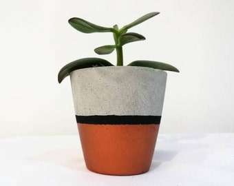 Small Concrete Planter with Painted Finish