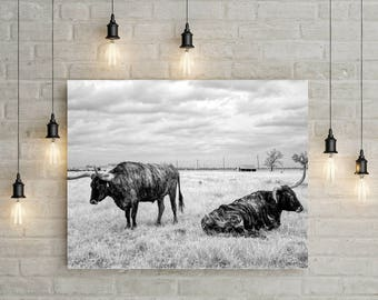 Longhorn Steer Photograph, Texas Cows, Black White Photo, Farmhouse Modern Wall Art, Cows, Photography, Country Cabin, Southwest