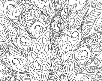Peacock coloring Etsy