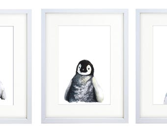 Sets of 3  Postcards Watercolour Arctic and Antarctic Animals Prints for Nursery