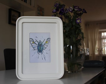 Watercolour Insect Painting