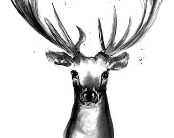 Deer | Deer, art print, print, print