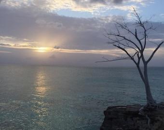 Bimini Sunset Canvas Art