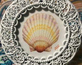 Seashell drawing in ornate white frame