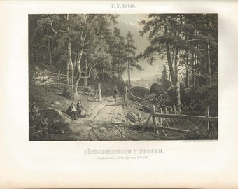 Swedish Vintage Print from 1865, Forest Scene