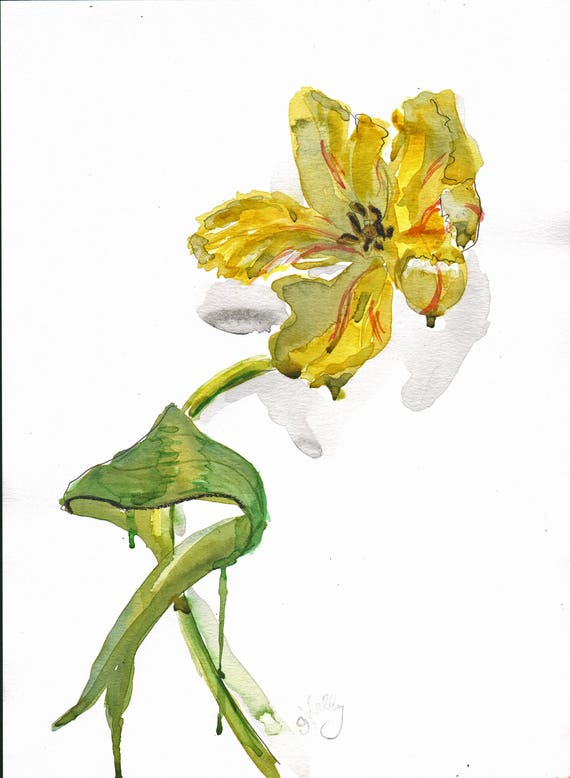 Watercolor flower painting-Yellow Parrot Tulip- original by Gretchen Kelly