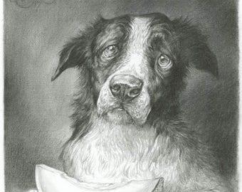 Melon Collie - original pencil drawing - dog - border collie - fruit - pun - art - melon