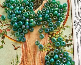 Vintage Rocailles Glass Beads, AB Matte Tr Green Beads, 4mm beads,6/0 rocailles,Miyuki beads,Shabby Chic Beads,Aurora Borealis Bead #1713