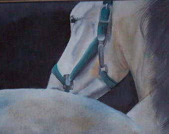 Horse Painting, Horse Print, Horse Art, Equine Painting, Equine Print, Equine Art, Gray Horse Painting, Gray Horse Print