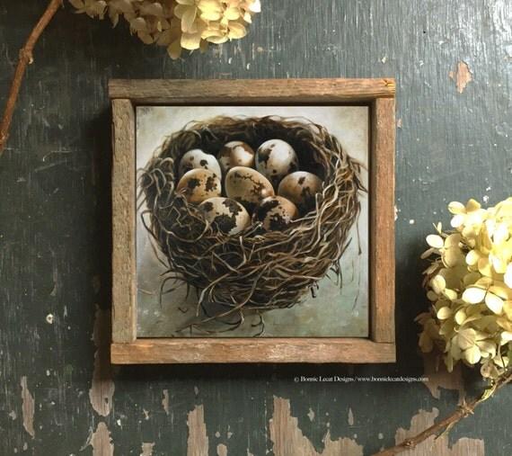 Bird Nest Decor Housewarming Gift Idea Bird Nest Art Print