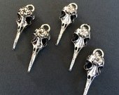 10 Large Antiqued Silver Bird Skull Charms Silver Bird Skeleton Head Pendants Large Silver Tone Jewelry Making Charms 41mm x 14mm x 11mm