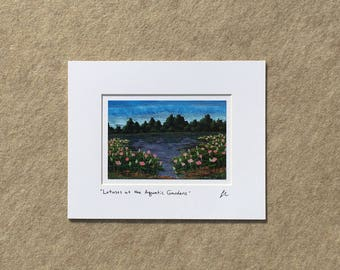 "Small print ""Lotuses at the Aquatic Gardens"" YOUR CHOICE of mat color, fits 8x10 inch frame, high quality reproduction print"