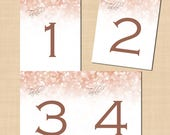 Rose Gold Sparkles Table Numbers (4.25x5.5): Text-Editable in Microsoft® Word, Printable on Avery® Postcard Products, Instant Download