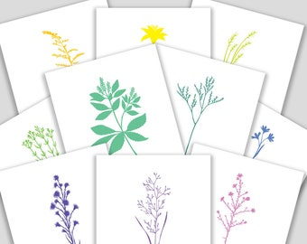 "Card Set with all ten (10) Flowers from ""Vineyard Magic"""