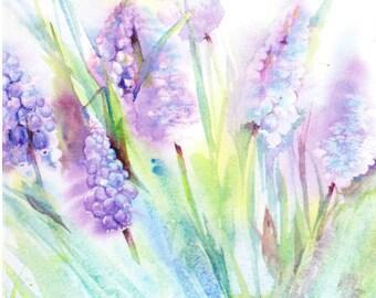 Grape Hyacinth - Blank Greetings Card, Muscari Card, Grape Hyacinth Card, Spring Floral Card, Spring Flower Card