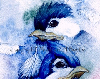 LIMITED EDITION ACEO Card; run of only 15, from an original watercolor, artists trading card, collector's item, baby birds, feathers,