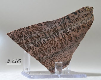 Gorgeous, High Definition Manganese Dendrites, on Banded Pink Rhyolite