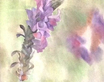 Lavendar Watercolor Painting Print