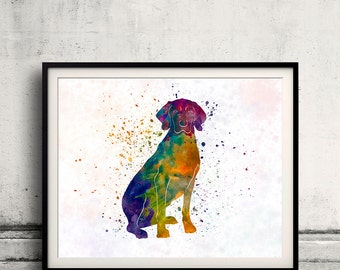 Polish Hound in watercolor 01 - Fine Art Print Poster Decor Home Watercolor Illustration Dog - SKU 2519