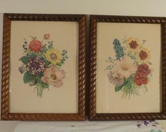2 Vintage 50's Botanical Floral Framed Litho-Prints