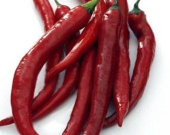 "50+ Cayenne Pepper Seeds- Italian ""Cayenna""- Heirloom Variety!"