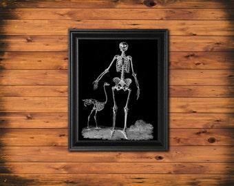 Halloween Decor, Human Skeleton Art Print, Human Skeleton, Anatomy Art Print, Halloween Wall Art, Black and White Art Print, Skeleton BW4