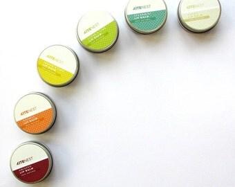 6x 100% Natural Lip Balm with Shea Butter, Coconut Oil and Vitamin E