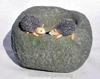 Hedgehog Planter for Miniature Garden, Fairy Garden
