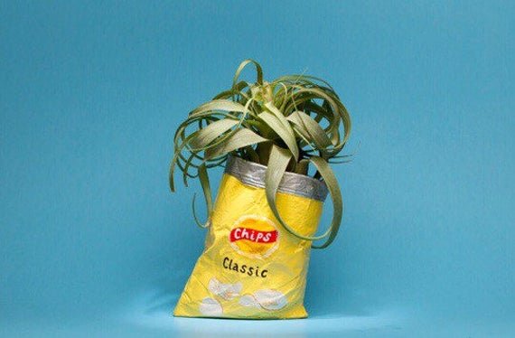 LAYS CHIP BAG planter