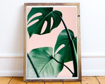 Palm Leaf Print,Pink and Green,Leaf,Art,Tropical Print,Exotic Print,Palm Print,Nature Print,Nature Decor,Plant Print,Wall Print,Interior Art