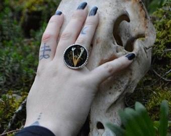 Vengeance bird jaw ring