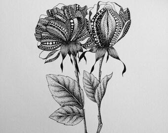 Oringinal Botanical Mandala Illustration