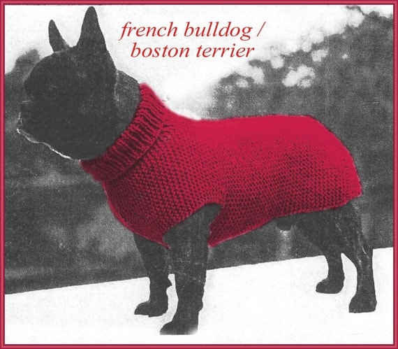 Knitting Patterns For Bulldog Sweaters : Knitting pattern for Dog sweater to fit a French Bulldog or