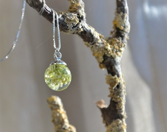 Wonderful weed necklace with field penny cress and eco resin, handmade in Ireland, botanical necklace, flower necklace, sterling silver