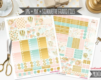 50% MEGA SALE!! Pink and Gold Hot Balloon Digital Printable Planner Stickers Weekly Stickers Digital Planner Stickers Floral Planner Sticker