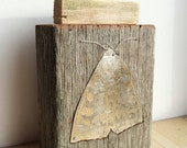 Metal butterfly inlaid into reclaimed timber