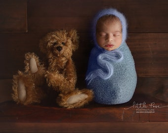Little Pose ~ Shelf with Bear Newborn Digital Background High Res jpg file