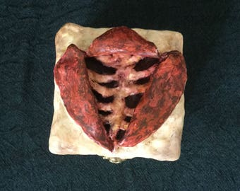 Autopsy Postmortem Dissection Trinket Box (Horror, Macabre, Morbid, Gore) OOAK Custom