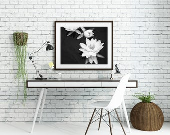 Nature Photography - Black & White Photography - Home Decor - Water Lily Art - Flower Art - Fine Art Photography - Delightful Print