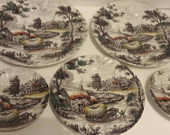 Vintage Staffordshire Yorkshire Ironstone Plate Lot Country Farm Cottage