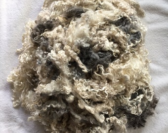 Baby goat mohair fleece-Bi-color-cream and charcoal-washed 2 ounces